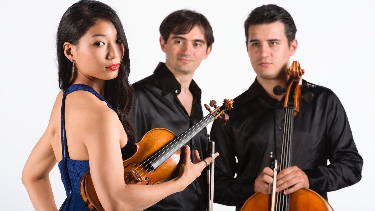 イタリアの病院の屋上でバイオリンを弾いた横山令奈とは?経歴がヤバい!